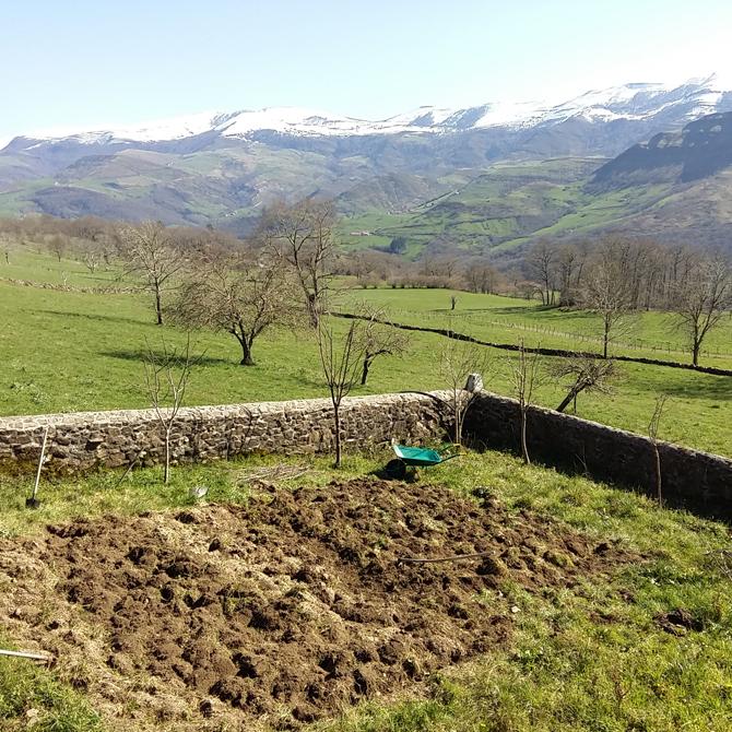 un-huerto-en-las-montanas_el-antes_permacultura-agroecologia