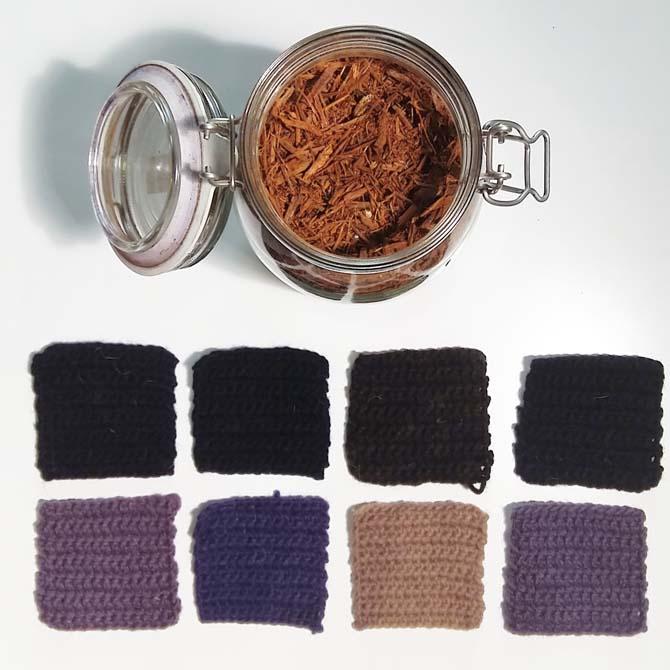 Fibras proteicas_Campeche_Curso de capacitación en Tintes Naturales en The Dyer's House