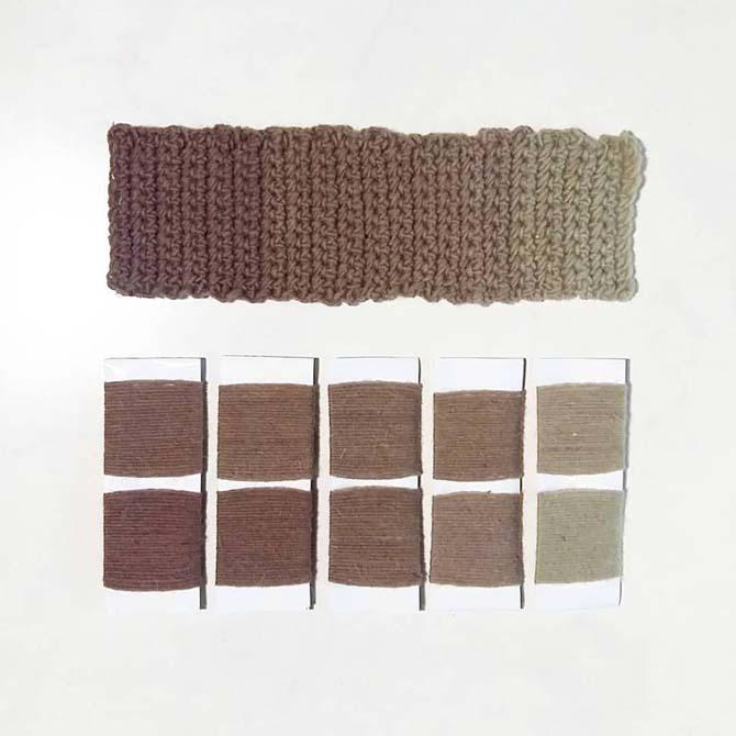 Investigación tintórea_Aristotelia chilensis_Curso de capacitación en Tintes Naturales en The Dyer's House