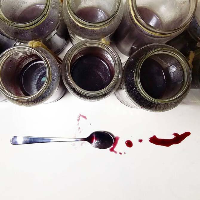 Investigación tintórea_Curso de capacitación en Tintes Naturales en The Dyer's House
