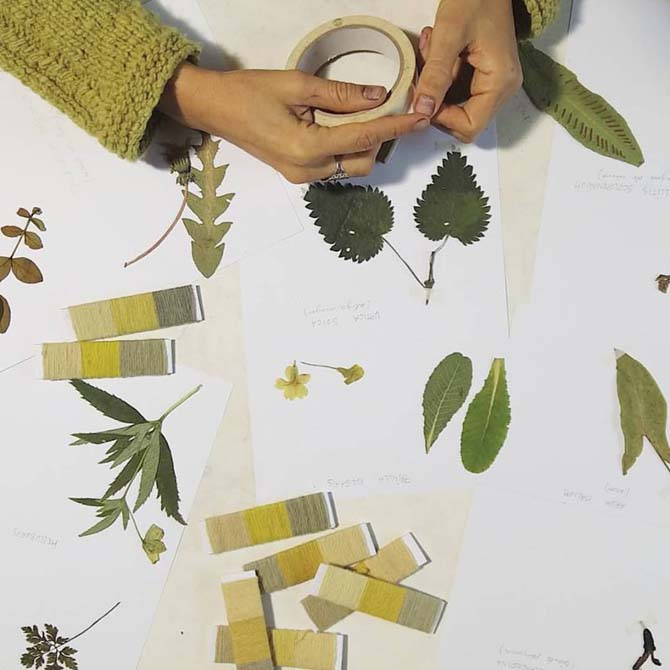 The Dyer's House_Escuela de Fibras & Tintes Naturales_Identificación tintórea