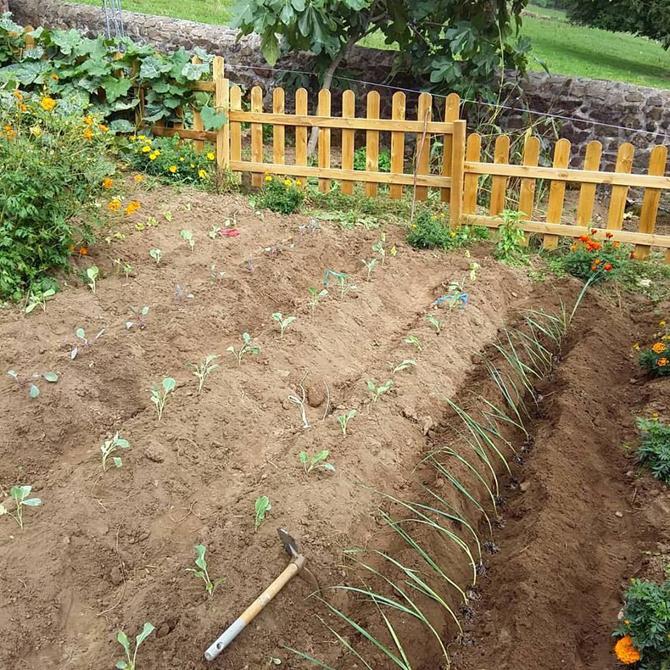 un-huerto-en-las-montanas_huerto-de-invierno_permacultura-agroecologia