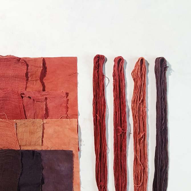 Fibras celulósicas_Curso de capacitación en Tintes Naturales en The Dyer's House