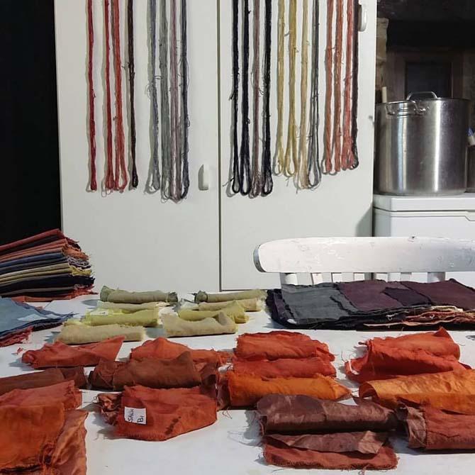 Teñido Natural de Fibras Proteicas_Curso de capacitación en Tintes Naturales en The Dyer's House