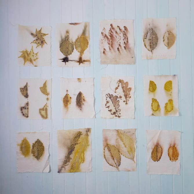 Curso de Ecoprint «Estampación Botánica»