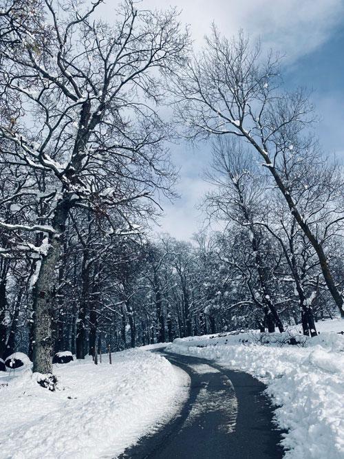 Carreteras-nevadas-en-el-Valle-de-Soba