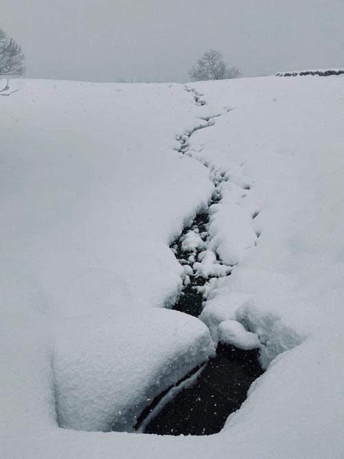 El-papel-de-la-nieve-en-el-ciclo-del-agua